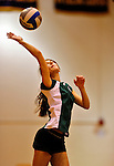 14 November 2010: Vermont Commons School Junior Sarah Mueller in action during the 2010 Vermont State Volleyball Championships at Saint Michael's College in Colchester, Vermont. Participating schools included: the Enosburg Falls Hornets, the Lake Region Union Rangers, the Lyndon Institute Vikings, and the VCS Flying Turtles. For the third consecutive year the Lady Turtles were champions, while the boys championship went to Lake Region Union High School for the first time. Mandatory Credit: Ed Wolfstein Photo.