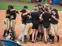 NWA Democrat-Gazette/ANTHONY REYES @NWATONYR<br /> De Queen players celebrate their 4-1 win over Valley View Friday, May 19, 2017 in the 5A State Softball Championship at Bogle Park in Fayetteville.