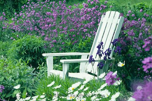 White Adirondack chair with purple flowers