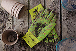 Gardening Gloves and Pots for Plants