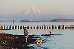 Dog walk on the Columbia River, with Mt. Hood behind.