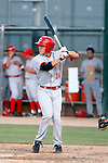Dominic D'Anna - AZL Reds - 2010 Arizona League. Photo by:  Bill Mitchell/Four Seam Images..