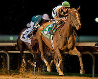 Flashy Dresser, jockey Julien Leparoux up, made a bold move late between horses to win the Robert Hilton Stakes on Charles Town Classic Night at Charles Town Races & Slots in Ranson, West Virginia on April 14, 2012.