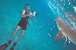 Peter Zuccarini Videoing Lemon Shark