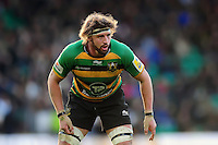 Tom Wood of Northampton Saints looks on. Aviva Premiership match, between Northampton Saints and Leicester Tigers on April 16, 2016 at Franklin's Gardens in Northampton, England. Photo by: Patrick Khachfe / JMP