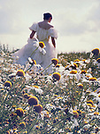 A woman in a white victorian dress, walking among camomile flowers on a meadow on a sunny day.