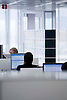 Digital. Barcelona 04/12/08 - .Employees working at office with  computer screens- (c) Vicens Gimenez