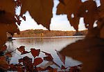 Burke Lake Fairfax Commonwealth of Virginia, Fine Art Photography by Ron Bennett, Fine Art, Fine Art photography, Art Photography, Copyright RonBennettPhotography.com ©