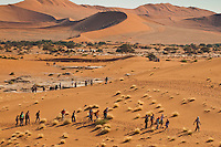 Tourists, Sossusvlei, Namib-Naukluft National Park