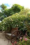 Seat on wheels in Canarian garden. Tenerife, Canary Islands