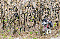 bicycle leaning against vineyard post chateau d'yquem sauternes bordeaux france