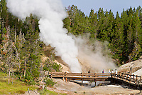 Dragons Mouth Spring in Mud Volcano thermal area
