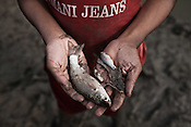 A local Chowduli boy poses with the fish he caught in a small pond in Kuliadanga village of North 24 Parganas in West Bengal, India. Photo: Sanjit Das/Panos for The Wall Street Journal. Slug: ICASTE