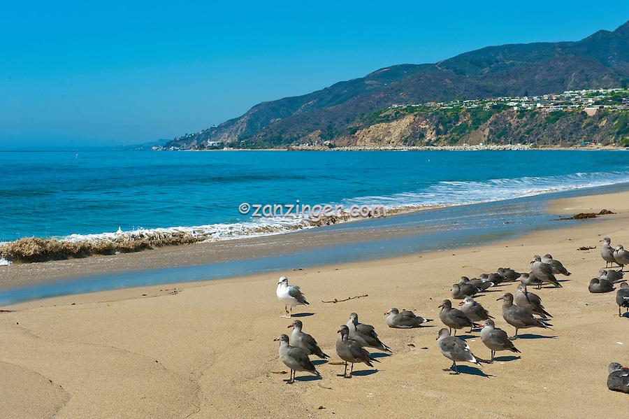SoCal Beaches, Los Angeles, CA, Ocean Waves, Sand, Rocks, Pacific Coast Highway, PCH