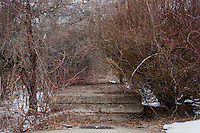 A sidewalk is overgrown and dirty on the campus of the Fernald Developmental Center in Waltham, Massachusetts, USA.  Much of the campus has fallen into disrepair.