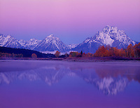 749450318 predawn alpenglow lights up mount moran and the teton range framed by fall colored aspens populus tremuloides along the snake river in this tranquil view from oxbow bend in grand tetons national park wyoming