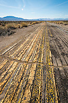 Pavement test paining on an abandoned roadway, Tonopah, Nevada