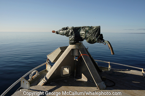 Covered harpoon gun on bow of Norwegian whaling boat Barents sea Arctic Norway North Atlantic.