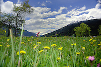 Meadows, Imst_gallery