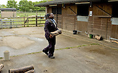 Carrying a small log at the stables.  14-16yr olds on the School Link Project doing Animal Care at F.E.College.