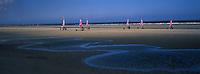 EEurope/France/59/Nord/Bray-Dunes :  Chars à voile sur la plage