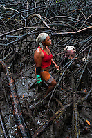 Colombian girls collect shellfish among the tree roots in the mangrove swamps on the Pacific coast, Colombia, 12 June 2010. Deep in the impenetrable labyrinth of mangrove swamps on the Pacific seashore, hundreds of people struggle everyday, searching and gathering a tiny shellfish called 'piangua'. Wading through sticky mud among the mangrove tree roots, facing the clouds of mosquitos, they pick up mussels hidden deep in mud, no matter of unbearable tropical heat or strong rain. Although the shellfish pickers, mostly Afro-Colombians displaced by the Colombian armed conflict, take a high risk (malaria, poisonous bites,...), their salary is very low and keeps them living in extreme poverty.