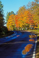 Fall color reflects in puddles on a road near Marquette, Michigan in autumn.