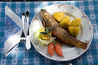 Bad Aussee, Ausseerland, Steiermark, Styria, Austria, September 2008. A woman in traditional dress serves us saibling fish at Lake Grundl in one of the lakeside restaurants. The province of Styria is known for its green alpine landscape, good food and many lakes. Photo by Frits Meyst/Adventure4ever.com