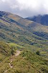 Hiking, Sendero las orquideas (orchid trail)