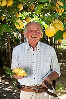 Lemon producer, Luigi Aceto in his lemon farm in Valle dei Mulini, Amalfi, Amalfi Coast, Italy
