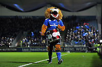 The Leinster mascot, Leo the Lion. European Rugby Champions Cup match, between Leinster Rugby and Bath Rugby on January 16, 2016 at the RDS Arena in Dublin, Republic of Ireland. Photo by: Patrick Khachfe / Onside Images