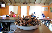 Plate full of fried chicken wings in Campas Restaurant in the Piñones section of Loiza, Puerto Rico.Photo/Angel Valentin
