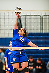 27 October 2013: Yeshiva University Maccabee Outside Hitter Marjorie Rasinovsky, a Freshman from Sao Paulo, Brazil, warms up prior to a game against the College of Mount Saint Vincent Dolphins at the College of Mount Saint Vincent in Riverdale, NY. The Dolphins defeated the Maccabees 3-0 in NCAA women's volleyball play. Mandatory Credit: Ed Wolfstein Photo *** RAW (NEF) Image File Available ***