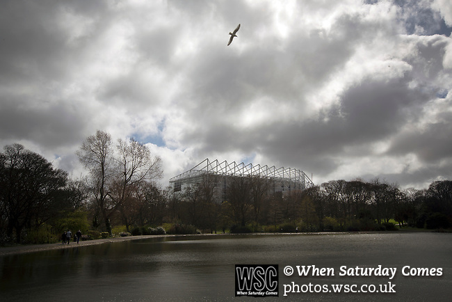 Newcastle United 1 Tottenham Hotspur 3 19/04/2015. St James Park, Premier League. A seagull flying over a lake in Leazes Park, situated behind the Leazes Stand of the stadium before Newcastle United host Tottenham Hotspurs in an English Premier League match at St. James' Park. The match was boycotted by a section of the home support critical of the role of owner Mike Ashley and sponsorship by a payday loan company. The match was won by Spurs by 3-1, watched by 47,427, the lowest league gate of the season at the stadium. Photo by Colin McPherson.