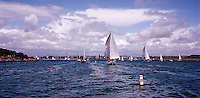 Sailing, Marina Del Rey, Ca, Southern California, Santa Monica Bay, Panorama, SoCal, Motor Boating, Power Yachts,