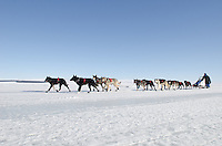 Photographs of John Baker's 2011 Iditarod run. Golovin Bay. Stephen Nowers/Alaska Dispatch.