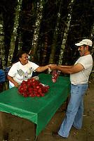 Guide buying lychee nuts at Lancetilla Botanical Garden, Honduras. Lancetilla Garden was established by American botanist William Popenoe in 1926.