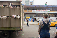 """Banksy enthusiasts flock to the trendy Meatpacking District in New York on Friday, October 11, 2013 to see the eleventh installment of Banksy's art, """"The Sirens of the Lambs"""". This particular sculptural piece consists of a slaughterhouse truck filled with bleating plush animals, controlled by puppeteers, which were driven around by a driver, right, who remained in character. The elusive street artist is creating works around the city each day, during the month of October accompanied by a satirical recorded message parodying a museum tour which you can get by calling the number 1-800-656-4271 followed by  # and the number of artwork.  (© Richard B. Levine)"""