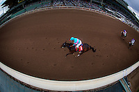 ARCADIA, CA - FEBRUARY 04: Royal Moe #1, ridden by Victor Espinoza wins the Robert B. Lewis Memorial Stakes at Santa Anita Park on February 4, 2017 in Arcadia, California. (Photo by Alex Evers/Eclipse Sportswire/Getty Images)