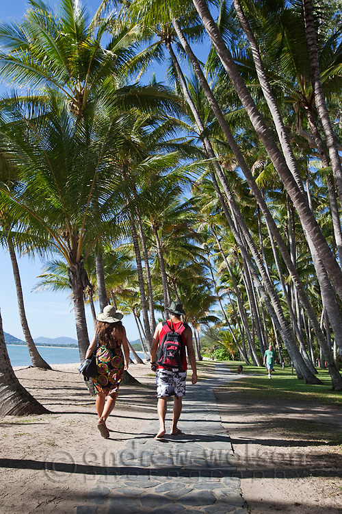 Tourists walk through coconut palms on Palm Cove beachfront.  Palm Cove, Cairns, Queensland, Australia