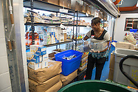 20130927 UVM Staff Does Burlington Volunteer Work
