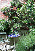 The factory conversion has been planned to incorporate garden spaces, such as this paved seating area surrounded by roses and lavender