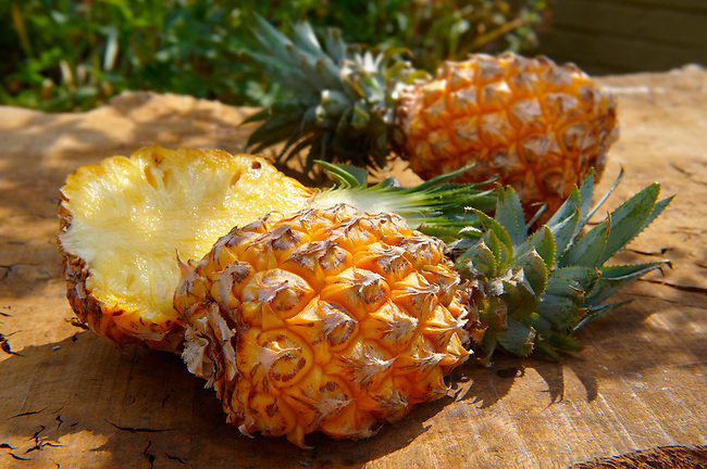 Pineapple Tropical Fruit Food Photography, pictures & images