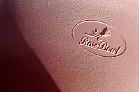 2 December 2006: Rose Bowl seat logo. Art detail.  Pac-10 college football upset UCLA beat the Trojans 13-9 during the final home game of the season for the UCLA Bruins vs the University of Southern California USC  Trojans at the Rose Bowl in Pasadena, CA.<br />