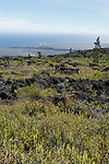 Hawai'i Volcanoes National Park, Big Island of Hawaii, Hawaii; the lava flows of the early 1970's can be seen looking south towards the Pacific Ocean, from an overlook along the Chain of Craters Road