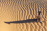 A dog sitting on sand in the desert.