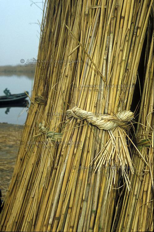 Curtatone (Mantova), Localit&agrave; le Grazie, lago Superiore, fasci di canne palustri che si raccolgono in inverno.<br /> Curtatone (Mantua), Le Grazie, the Upper Lake, bundles of reeds that are harvested in winter.