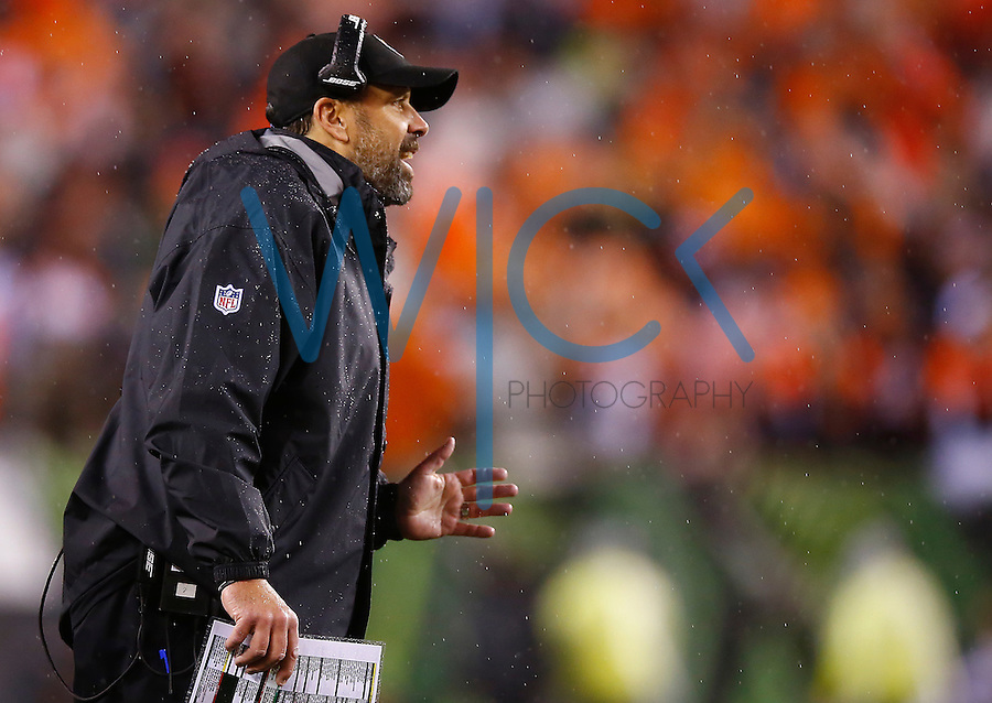 Offensive coordinator Todd Haley looks on against the Cincinnati Bengals during the Wild Card playoff game at Paul Brown Stadium on January 9, 2016 in Cincinnati, Ohio. (Photo by Jared Wickerham/DKPittsburghSports)