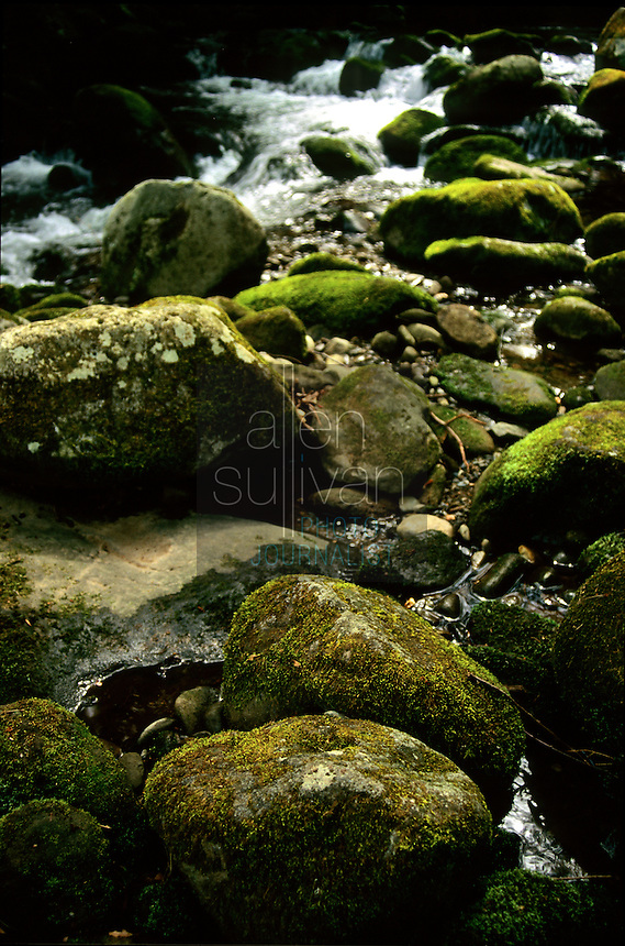 Boulders and river near Gatlinburg, Tennessee, 1993.