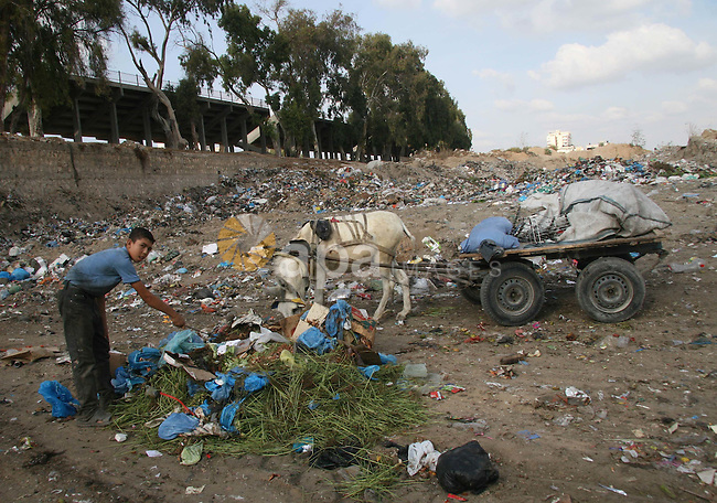 Palestinians collect rubbish for re-sale at a dump site in Gaza City in the impoverished Gaza Strip. Some Palestinians, driven by poverty exacerbated by the Israeli blockade and lack of employment opportunities, have resorted to combing landfill sites for bits and pieces of rubbish and scrap to sell on.